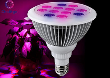 China 12 Watt Greenhouse LED Grow Lights Aluminum 1000LM 90V-265V E27 High Efficiency factory